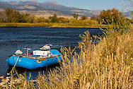 Madison River, fly fishing, raft, south of Ennis, Montana