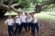 Arboles de Panama, Biomuseo
