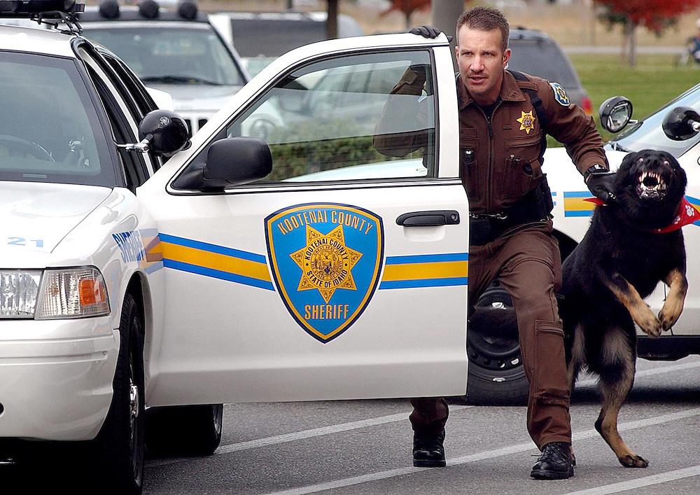 JEROME A. POLLOS/Press..Kootenai County Sheriff Deputy Jason Shaw keeps a hold on his partner Karo during a K-9 unit demonstration at the Hayden Albertson's on Tuesday. Karo has been the only dog on patrol since the end of August when two of the three K-9 units were retired due to medical conditions.
