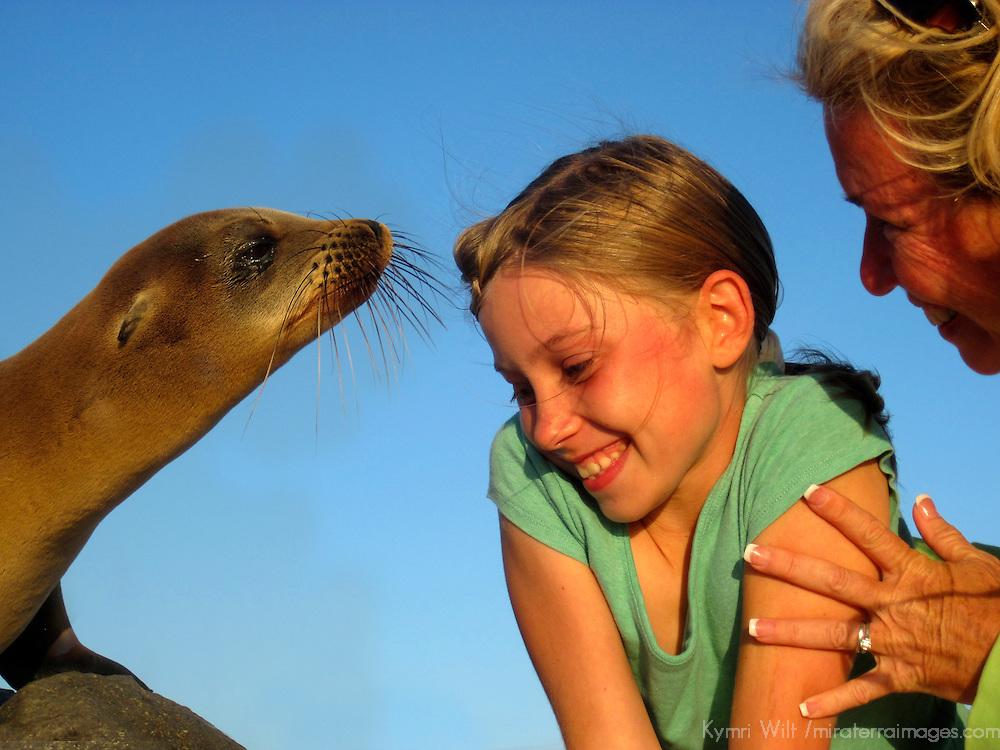 South America, Ecuador, Galapagos Islands. Curious Galapagos Sea Lion meets young girl and her mother.