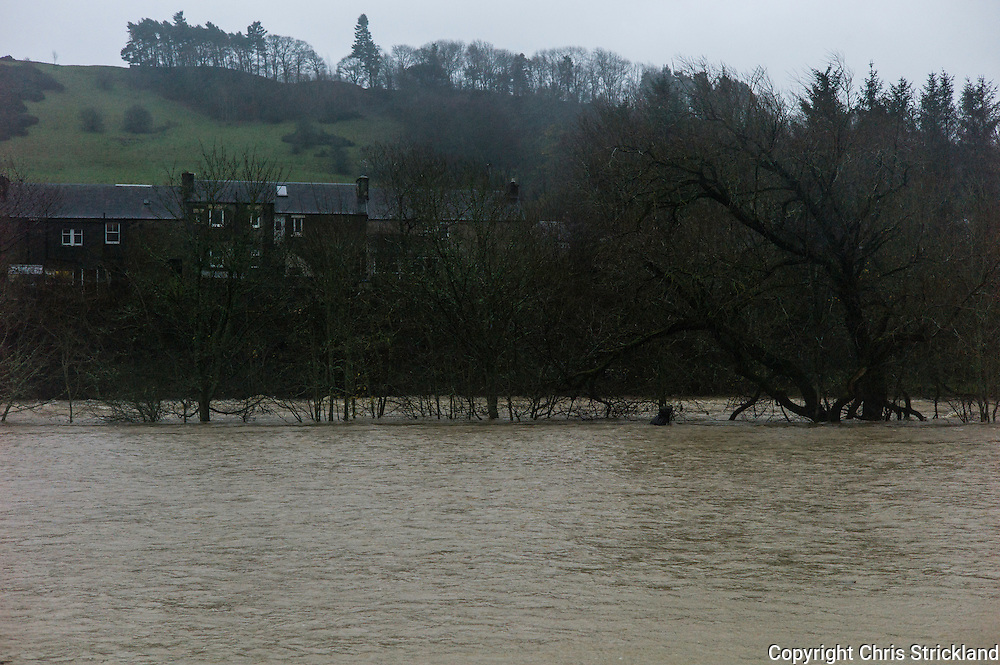 Mansfield Road, Hawick, Scotland, UK. 5th December 2015. The River Teviot spreads into the periphery of Hawick, many residents have been evacuated from their homes in preparation for floods.