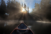 At sunrise, low autumn light catches the mist rising off Pine Lake in Sammamish. (Steve Ringman/The Seattle Times)