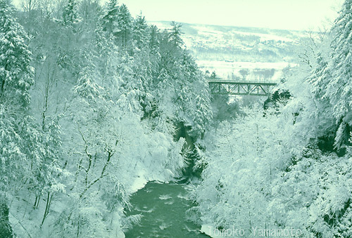 Cornell University in Ithaca, New York is covered with snow in the wintertime.  Fall Creek bounds the campus on the north side.  A view of the creek with the Stewart Avenue bridge from a pedestrian suspension bridge upstream.  The West Hill is seen beyond Lake Cayuga.