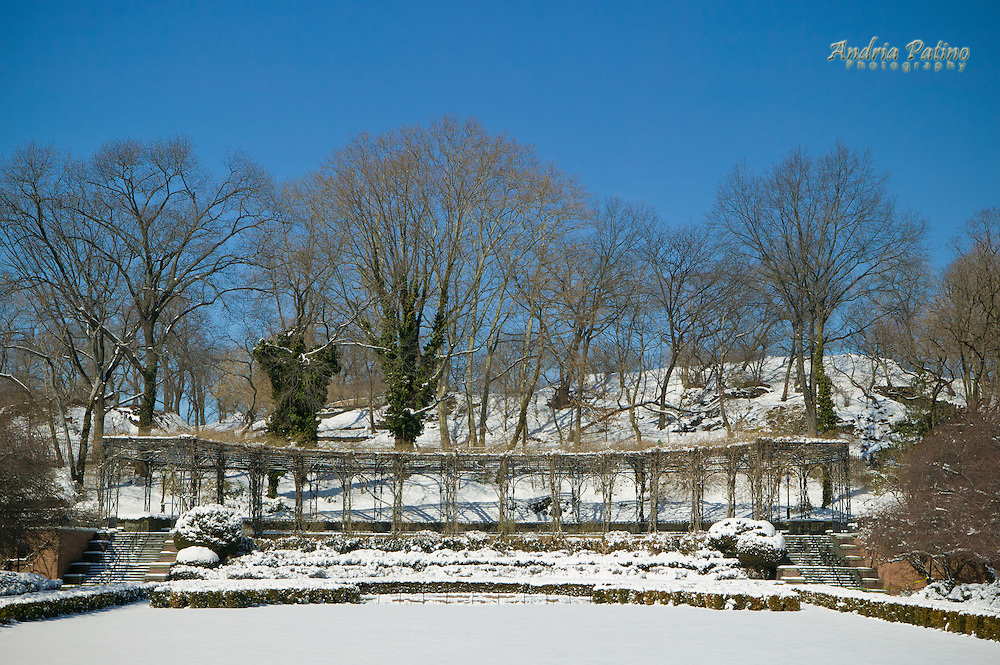 Winter At The Conservatory Garden Central Park Andria Patino Photography
