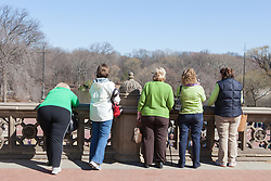 five women in Central Park