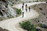"Cary Smith (out front of pack), 43, of Littleton, Co.  leads a group of riders down an access road as they make their way to ""Moore Fun"" during the 11th Annual Fruita Fat Tire Festival on Friday April 28, 2006. The Festival went back to its roots this year featuring loosely organized rides many hosted by local riders, expo tents, music and plenty of riding on the many trails that have made Fruita famous world-wide. The event lasted all weekend. Smith said he has been to all 11 Fruita Fat Tire Festivals..(MARC PISCOTTY/ © 2006)"