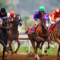 February 07 2015: California Chrome and Victor Espinoza race in the San Antonio Stakes at Santa Anita Park in Arcadia CA. Alex Evers/ESW/CSM`