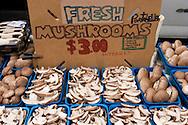 Fresh Mushrooms, Old Monterey Farmers Market, California