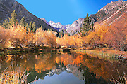 Fall Colors Reflected in a Sierra Mountain Pond