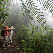 Birdwatchers in the cloud forest at Wayqecha Biological Station, Peru.