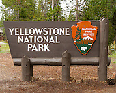 Yellowstone National Park 2014