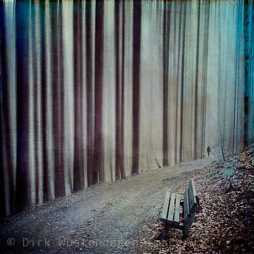 Bench In A Forest   Abstraction