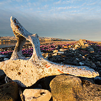 Canada, Nunavut Territory, Setting midnight sun light Bowhead Whale bones marking whaler's grave from 1880's at Deadman Island along Hudson Bay