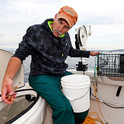 WA11832-00...WASHINGTON - Phil Russel counts shrimp as he places them in a live well while shrimping on the Puget Sound.  (MR# R8)