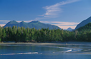 McKenzie Beach near Tofino on the west coast of Vancouver Island; British Columbia, Canada.