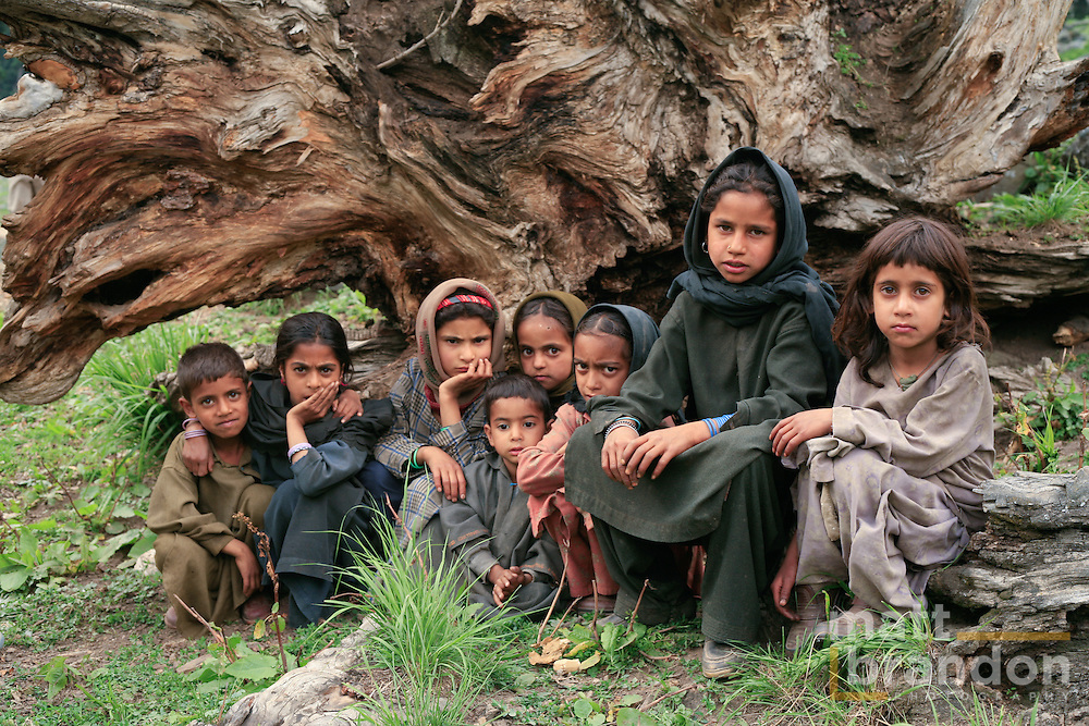 Pahari and Bakawal children sit in front of a fallen tree for their photo. Lidderwat, Kashmir, India