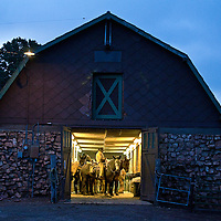Packers mounted ready to leave the barn at  Yaki point