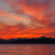 Four Canada geese, rendered in silhouette, watch a fiery fall sunset over the Olympic Mountains of Washington state while swimming on Puget Sound off Alki Point.