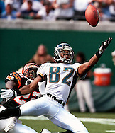 Client: Associated Press. Cincinnati Bengals vs Jacksonville Jaguars. (Photo by Robert Falcetti)