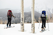 A pair of backcountry skiers, Meaghan Daly (left) and Sarah Conlin, pass a pair of quaking aspen in Uncompahgre National Forest, Colorado.