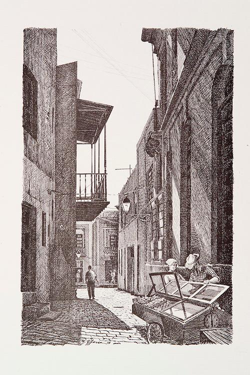 Cat.#01 - Lithographic print of Pen and Ink drawing of a typical alley scene in Old San Juan depicting a fruit vendor and his cart. Some research of the old city suggests this is probably Callejon del Tamarindo.Printed on heavy, pebbled stock.<br /> Paper size is 10x13&quot;. Image size is approximately 6x9&quot;<br /> Cat.#01 - Impresi&oacute;n litogr&aacute;fica de un dibujo a plumilla de una escena t&iacute;pica de un callej&oacute;n en el Viejo San Juan que describe a un vendedor de frutas y su carreton. Un estudio de la antigua ciudad indica que este es probablemente el Callej&oacute;n del Tamarindo. Impreso en papel pesado y superficie rugosa.<br /> Tama&ntilde;o del papel es 10x13&quot;. Tama&ntilde;o de la imagen es aproximadamente 6x9&quot;