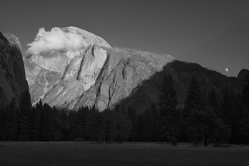 Half Dome And Moon Rising - Yosemite Valley Meadow - Yosemite - Black & White