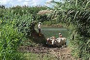Sagua - Cuba, 2010