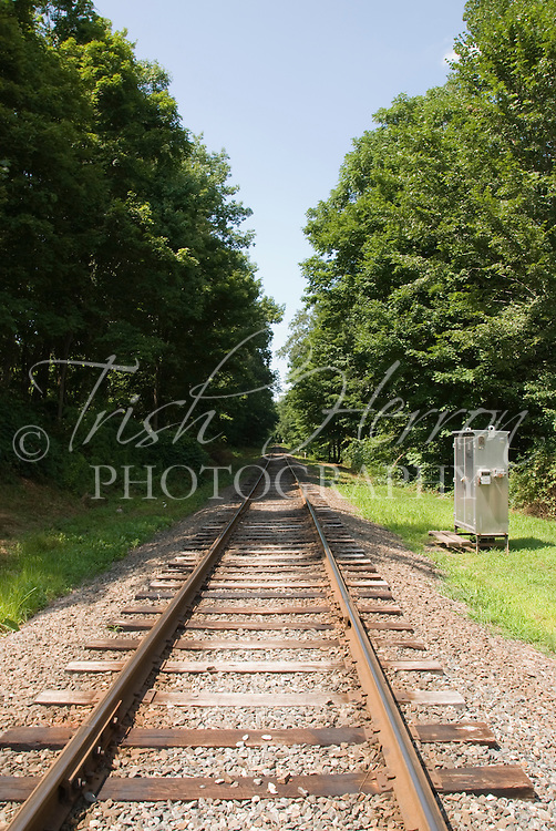 Railroad tracks stretch into the distance on a summer day in Haddam, Connecticut.