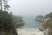 Point Lobos & Monterey