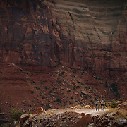 SHOT 10/17/16 11:07:28 AM - Mountain bikers climb the Shafer Trail section of the White Rim Trail. The White Rim is a mountain biking trip in Canyonlands National Park just outside of Moab, Utah. The White Rim Road is a 71.2-mile-long unpaved four-wheel drive road that traverses the top of the White Rim Sandstone formation below the Island in the Sky mesa of Canyonlands National Park in southern Utah in the United States. The road was constructed in the 1950s by the Atomic Energy Commission to provide access for individual prospectors intent on mining uranium deposits for use in nuclear weapons production during the Cold War. Four-wheel drive vehicles and mountain bikes are the most common modes of transport though horseback riding and hiking are also permitted.<br /> (Photo by Marc Piscotty / &copy; 2016)