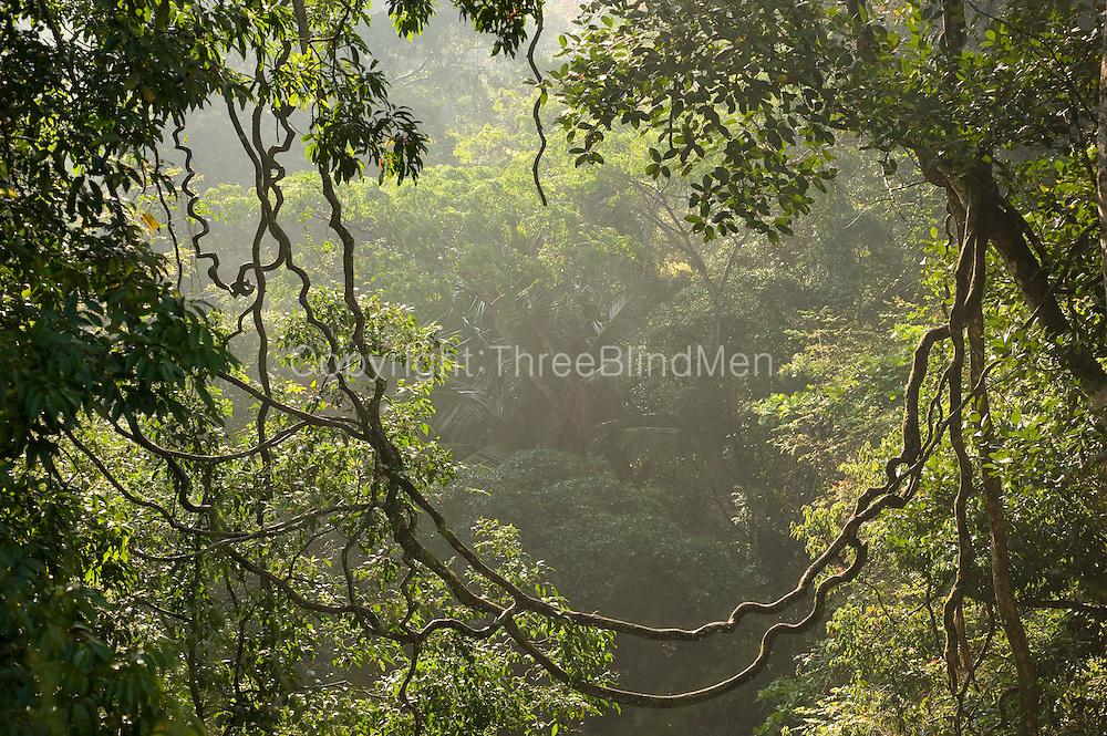 Landscape along the A4 road between Balangoda & Belihul Oya