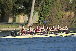 2012.02.25 Reading University Head 2012. The River Thames. Division 2. Bristol University Boat Club A Nov 8+