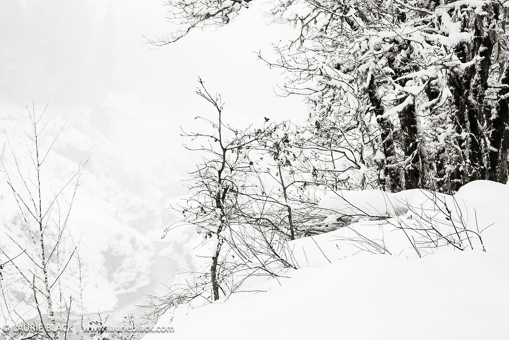B&W winter landscape fine art photo 2