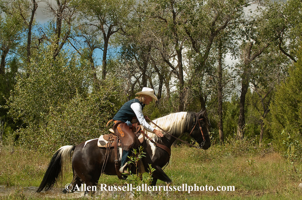 Trail Rider crosses water on paint horse, Montana, <br /> MODEL RELEASED, PROPERTY RELEASED