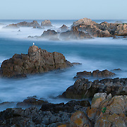 A 30-second camera exposure blurs the Pacific Ocean waves that crash into Point Pinos at Asilomar Beach, Pacific Grove, California.