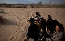 Mongolian ethnic minority farmer Gao Huang and his mother rides a horse cart through the Taminchagan desert on their way back from tree planting in Kunlun Qi in the Inner Mongolia Autonomous Region of China on 23 April 2011. The 16-year-old farmer and his family has been planting trees around their land, buying saplings on their own, in an effort to protect their crops from the encroaching sands of the desert. Inner Mongolia, China's third largest province, is fighting severe desertification, much like the provinces of Xinjiang, Gansu, Qinghai, Ningxia, Shaanxi, Heilongjiang and Hebei. Over-grazing, logging, expanding farms and population pressure, along with droughts have steadily turned once fertile grasslands into sandy plains. China has adopted measures to stop the land degradation such as reforestation, resettling nomadic Mongolians from grasslands to urban areas and restricting grazing areas. Tree planting has become a key government effort to combat desertification and supporting the government's reforestation endeavors are numerous non-governmental organizations (NGOs), such as Shanghai Roots & Shoots. The NGO launched the Million Tree Project in 2007 in Kulun Qi with aims to plant its first million trees by 2014 to hinder the expanding desert. To-date, they have planted more than 600,000 trees.