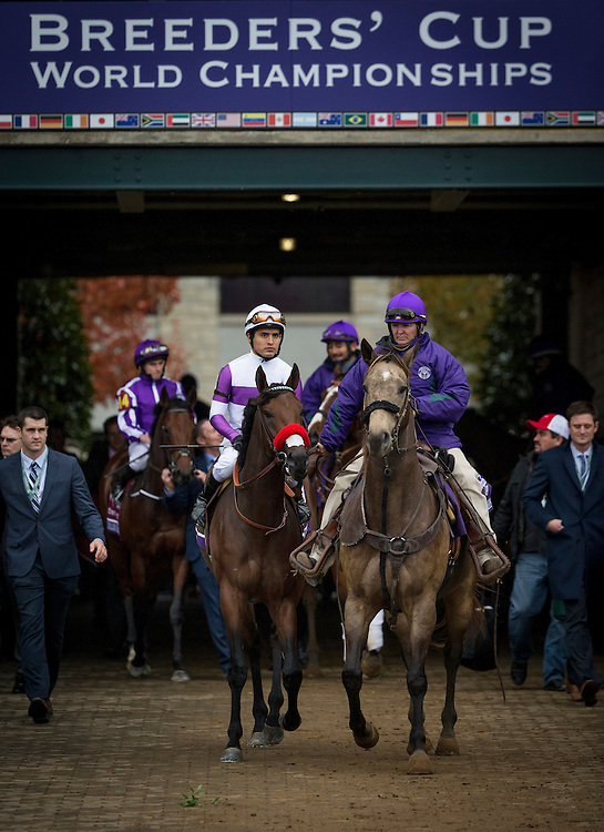 October 31, 2015:  Nyquist with Mario Gutierrez heads to  the track for the Breeders' Cup Juvenile at Keeneland Race Track in Lexington, Kentucky. Evers/ESW/CSM