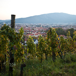 Vitigni e Maribor dall'alto