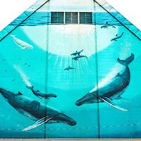 http://Duncan.co/wyland-mural/