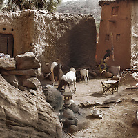 A girl pounds millet in a small courtyard, Ennde, Dogon Country, Mali