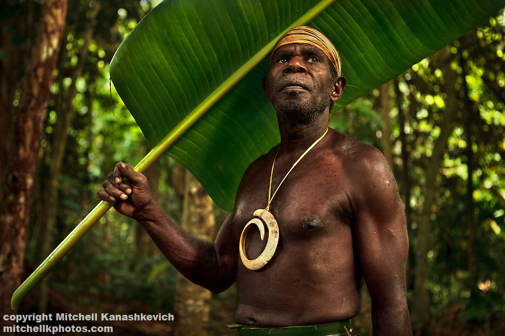 Chief Ayar is a prominent chief around the region of South West Bay, Malekula, Vanuatu. The pig task on his chest symbolizes his chiefly status. As many other locals in the area he uses traditional leaf umbrellas in place of a western style material umbrella.