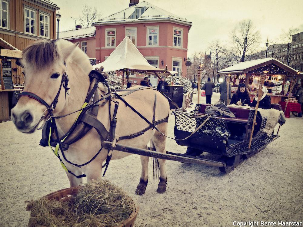 Fjording, Julemarkedet i Trondheim