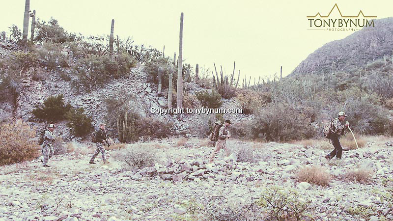hunting photography hunters hunting<br />  sonora desert