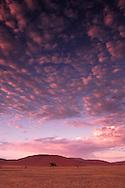 Sand dunes, Sossusvlei, Namib Naukluft Park, Hardap Region, Namibia