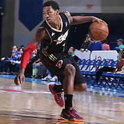 Erie BayHawks Guard Keith Appling (7) dribbles down the floor in the first half of a NBA D-league regular season basketball game between the Delaware 87ers and the Erie BayHawk (Orlando Magic) Friday, Mar. 20, 2015 at The Bob Carpenter Sports Convocation Center in Newark, DEL.