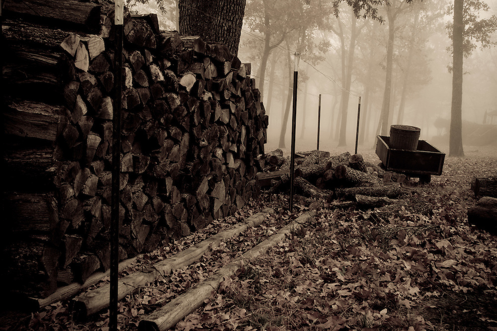 Stacked firewood ready for the coming winter. Cash property in north east Texas. Fallen leaves cover the ground. Wagon and trees in fog. Sepia toned