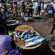 Fish is laid out for sale at the market in Elmina, about 130km west of Ghana's capital Accra on Thursday April 9, 2009. In Ghana, women are usually responsible for selling the fish caught by their husbands. Some local fishermen complain that the recent reduction in fish populations is not only making it more difficult for them to support their family, but also often a cause of tension and conflict between husband and wife.