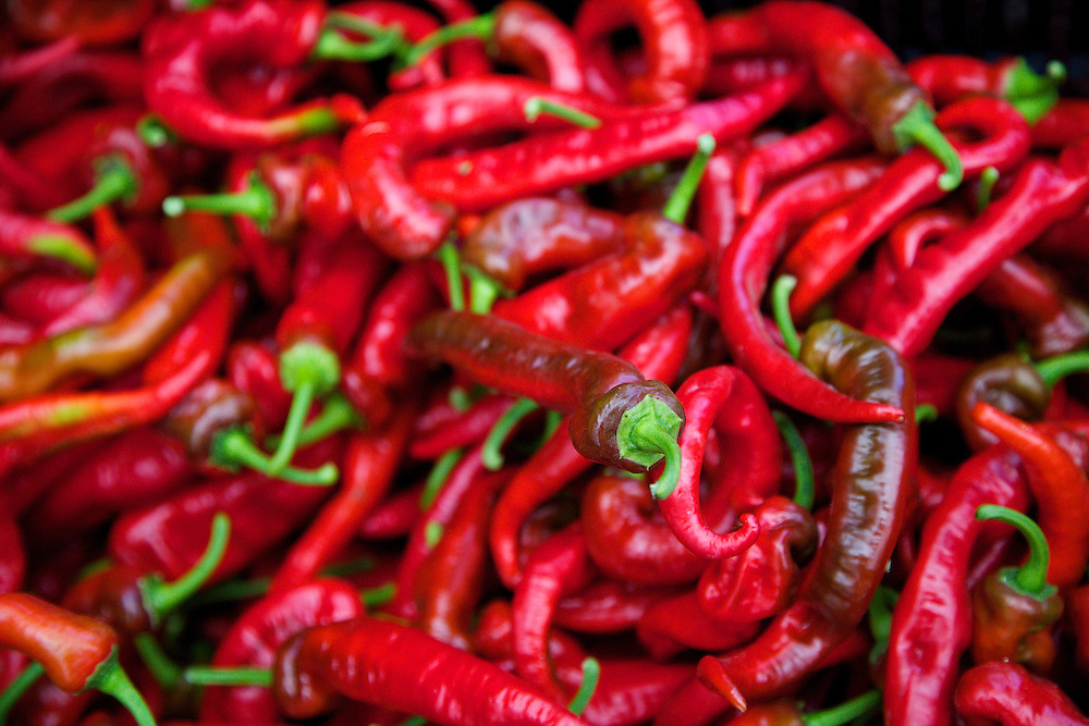 Market fresh organic red peppers at the bountiful Port Townsend Farmers Market in Jefferson county, WA State