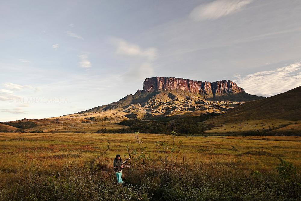 Expedition to Mount Roraima.<br /> Kukenan Tepui.