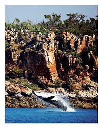 "Tear Sheet - image: Annabelle Sandes, ""The Kimberley, Australia's Last Great Wilderness"" by Vicki Lawrie, UWA Press"